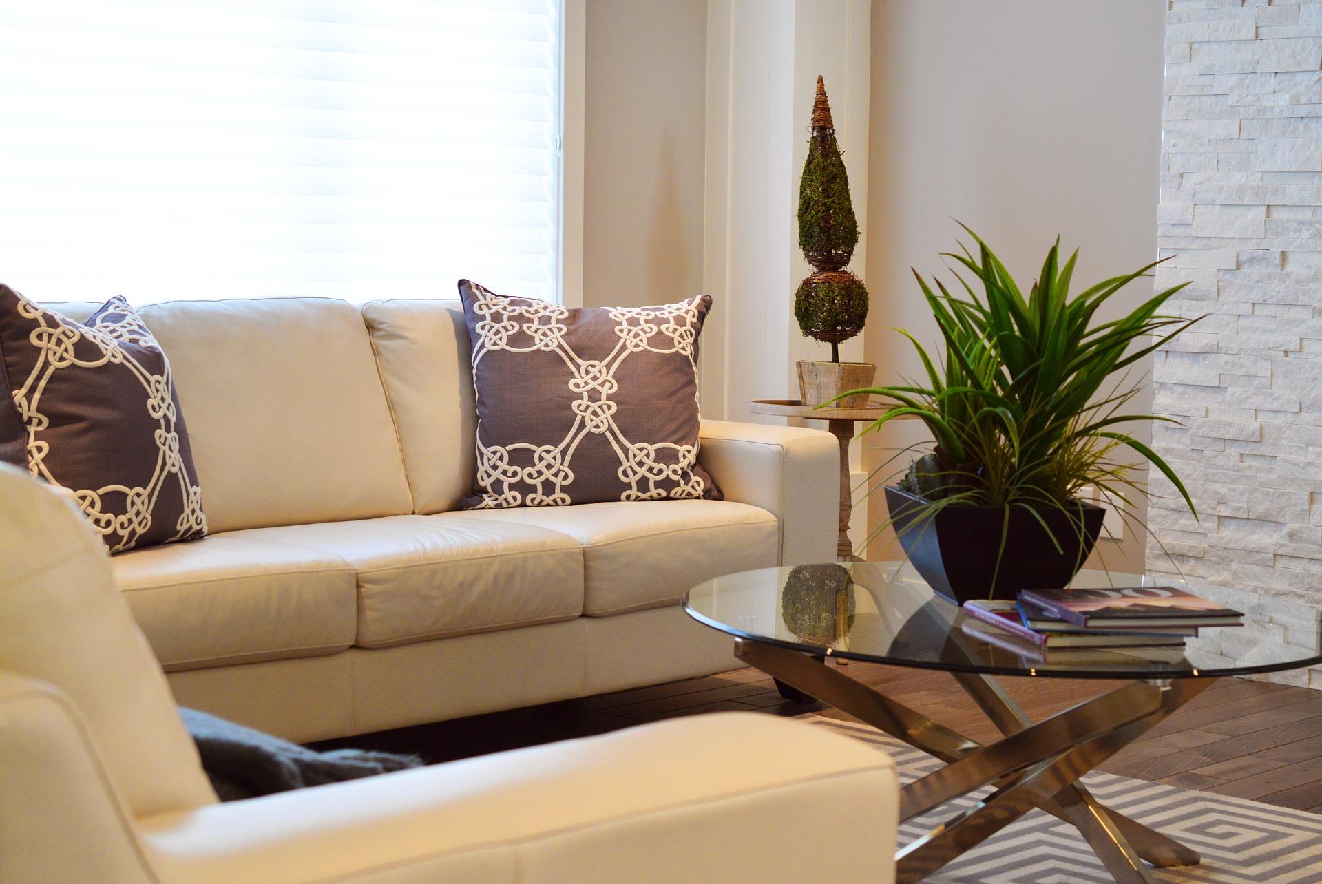 Sala decorada com sofás, almofadas, mesa de centro e plantas e tapete